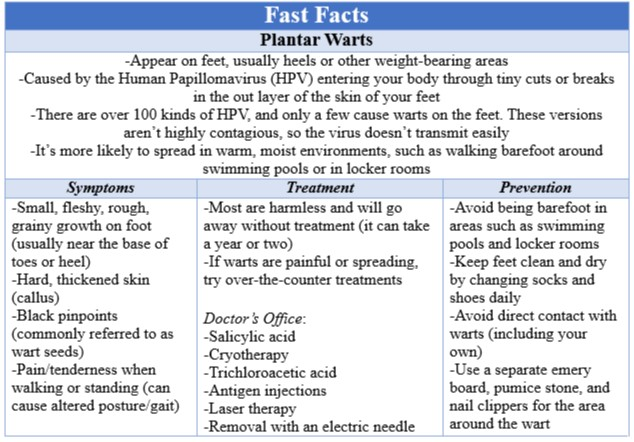 Fast Facts - Fragile X Syndrome